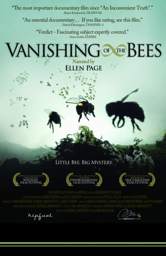 """Vanishing of the Bees"" Reveals an Ongoing Struggle for Pollinator Populations"